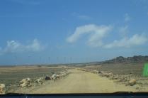 Aruba desert