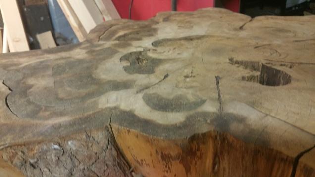 Bald Cypress - Found this slab pretty dirty