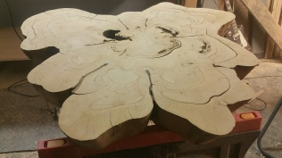 Bald Cypress - Finished sanding