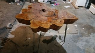 Bald Cypress -Legs attached and 1st layer of epoxy done.